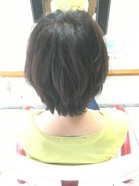 IMG_7032(1).JPG